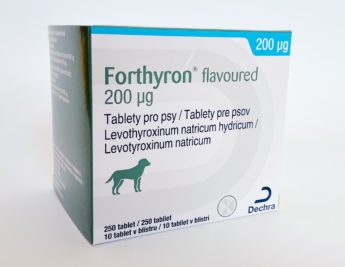 FORTHYRON Flavoured 200 μg tablety pro psy