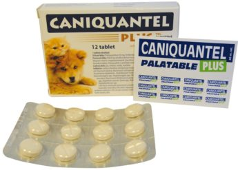 CANIQUANTEL PLUS ochucené tablety