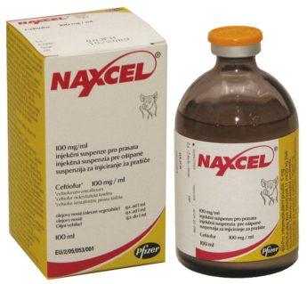 NAXCEL 100 mg/ml