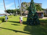 WS Havaj Modrá skupina
