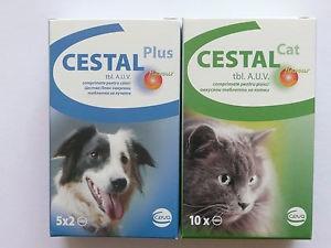 CESTAL CAT FLAVOUR 20 mg/230 mg tablety pro kočky