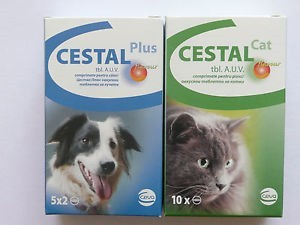 CESTAL PLUS FLAVOUR 50 mg/144 mg/200 mg tablety pro psy