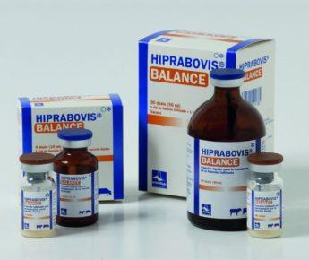 HIPRABOVIS BALANCE inj. sicc. ad us. vet.