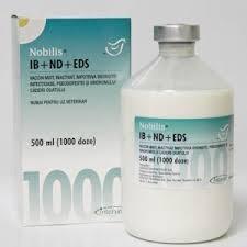 Nobilis RT+IBmulti+ND+EDS, Injekční emulze