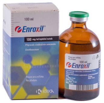 Enroxil 100 mg/ml