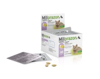 Milprazon pro kočky 4/10 mg