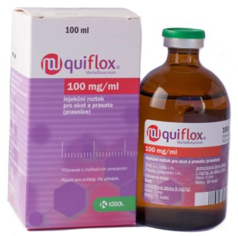 Quiflox 100mg/ml