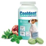 Cooldent