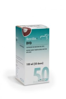 Bovilis BVD