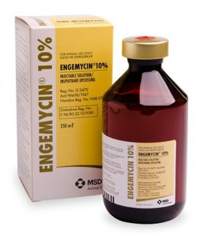 Engemycin 100 mg/ml