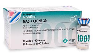 Nobilis Ma5 + Clone 30