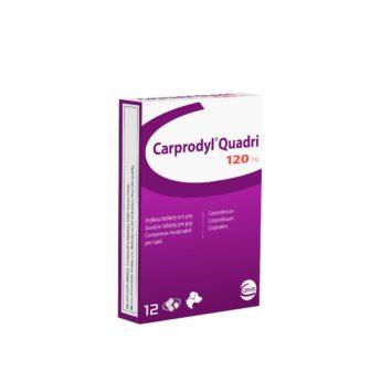 CARPRODYL Quadri 120 mg žvýkací tablety pro psy