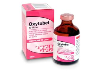 Oxytobel 10 IU/ml