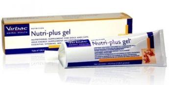 NutriPlus Gel