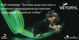 "09.02.2018 - Веб-семинар ""Основы диагностики и лечения гиперадренокортицизма (синдрома Кушинга) собак"""
