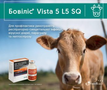 Бовіліс® Vista 5 L5 SQ