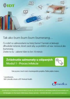 IDT E-learning- Zvládnutie salmonely u ošípaných