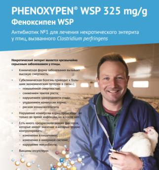Phenoxypen WSP 325 mg/g