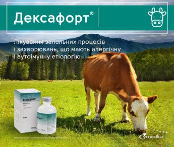 Дексафорт®