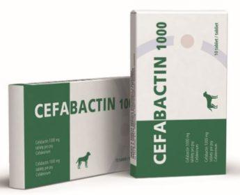 Cefabactin 1000 mg