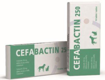 Cefabactin 250 mg