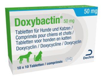 Doxybactin 50 mg