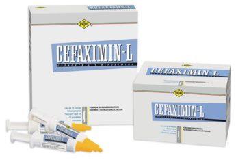 CEFAXIMIN L