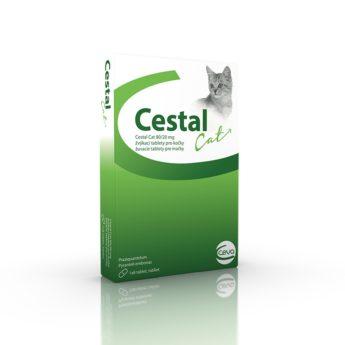 Cestal Cat 80/20 mg