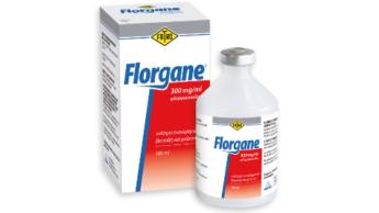 Florgane 300 mg/ml