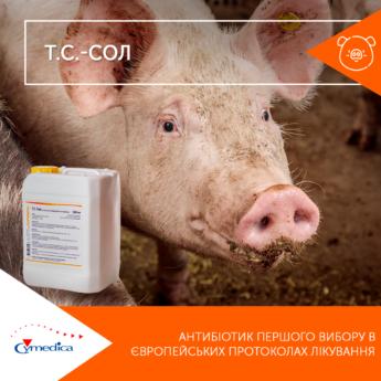 Антибіотик першого вибору в європейських протоколах лікування