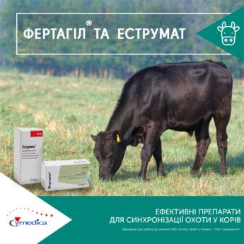 Ефективні препарати синхронізації охоти у корів