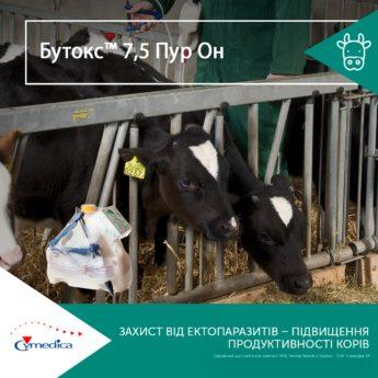 Захист від ектопаразитів - підвищення продуктивності корів