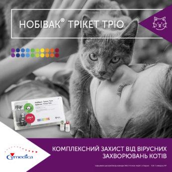 Комплексний захист від вірусних захворювань котів