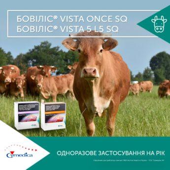 Одноразове застосування на рік - вакцинація корів