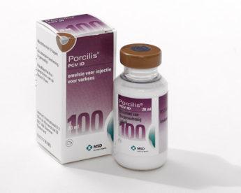 Porcilis PCV ID
