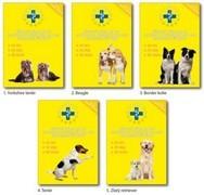 Očkovací a zdravotní průkaz Virbac s obalem - pes