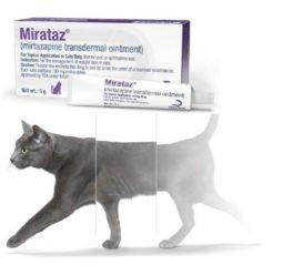 Mirataz® - transdermální mast pro kočky