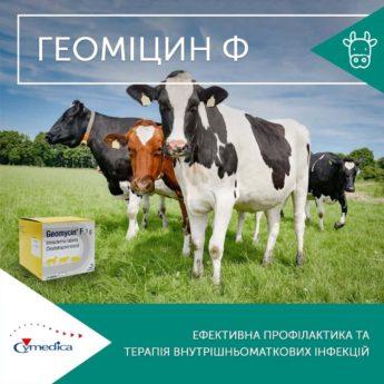 препарат для ефективної профілактики та терапії внутрішньоматкових інфекцій – Геоміцин Ф