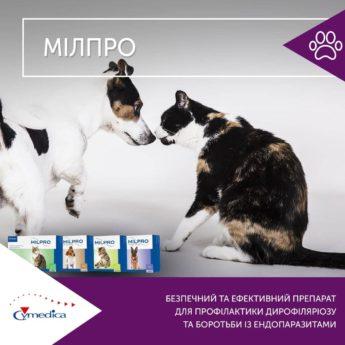 Мілпро - препарат для профилактики дирофіляріозу та боротьби із ендопаразитами