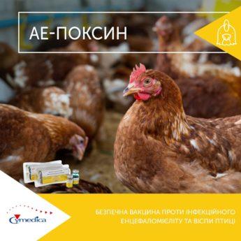 АЕ-Поксин - безпечна вакцина проти інфекційного енцефаломієліту та віспи птиці