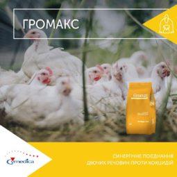 засіб для профілактики й боротьби з кокцидіозом у курчат-бройлерів - Громакс