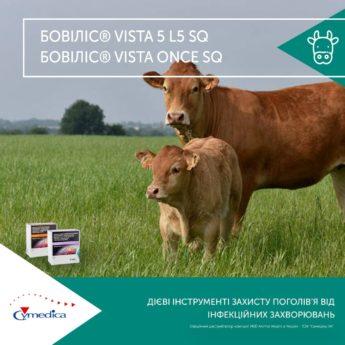 Бовіліс Vista - для захисту поголів'я від інфекцій