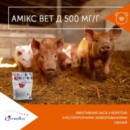 Амікс Вет Д - ефективний засіб у боротьбі з респіраторними захворюваннями свиней