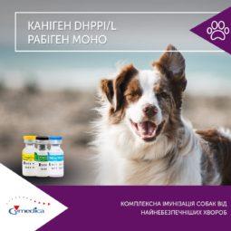 Каніген DHPPi/L та Рабіген моно - комплексна імунізація собак від найнебезпечнішх хвороб