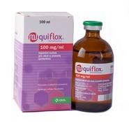 Quiflox 100 mg/ml, injekční roztok pro skot a prasata (prasnice)