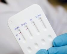 Rapid test Calf diarrhoea 4 Biox